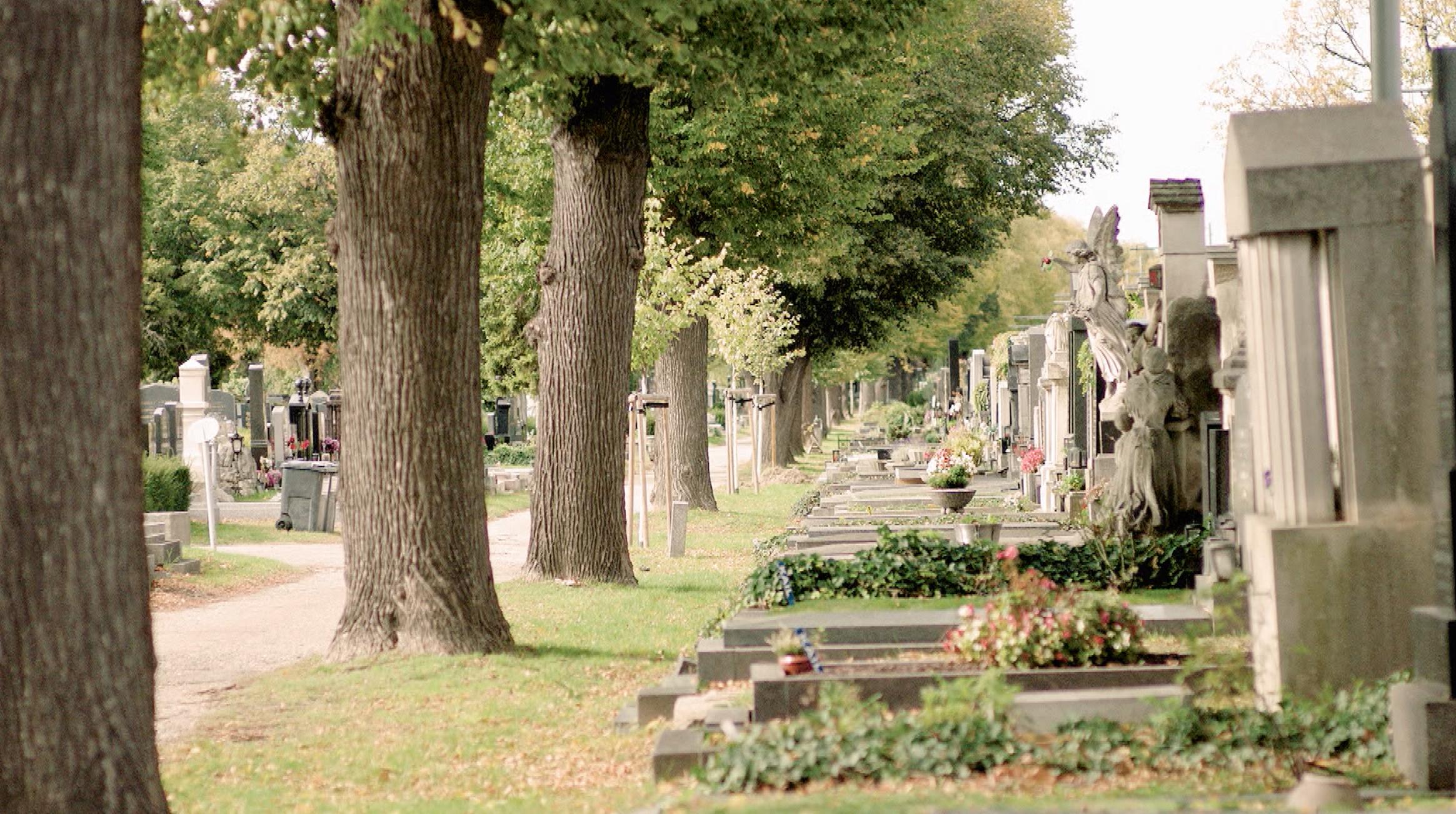 Einmal Kurz Gelacht Zentralfriedhof01