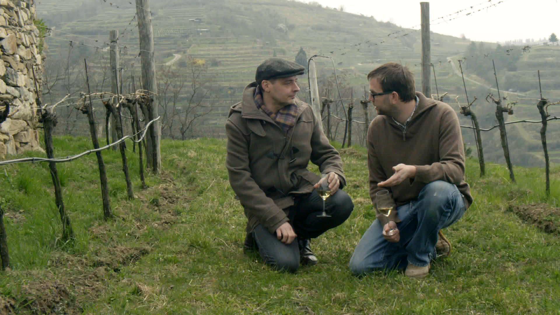 Nicolaus_Saahs_und_Thomas_Maurer_Warum_Wein_BIO_01 -Clever-Contents-Filmproduktion